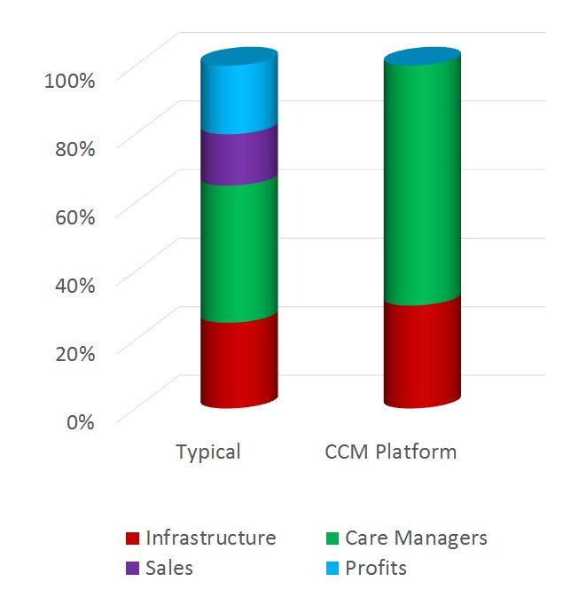 %medicare chronic care management %nursing care plan for chronic pain management